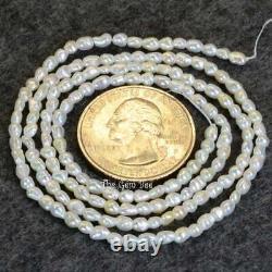 Rare Japanese Akoya White Saltwater Keishi Rice Pearl Nugget Bead 19.5 Strand