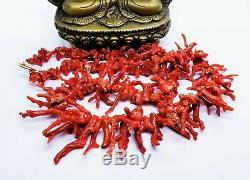 Rare Mediterranean Sea Sardinia Blood Red Coral Brunches 14k Gold Necklace