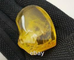 Stone Amber Natural Baltic Bead 42,8g White Vintage Old Rare transparent S-199