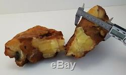 Stone Raw Amber Natural Baltic Bead 1583g 2-Pieces White Rare Vintage Old A-252