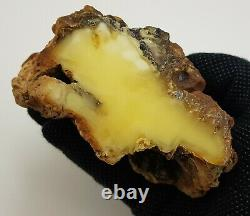 Stone Raw Amber Natural Baltic Vintage Special Rare Sea 290,2g Huge Old S-217
