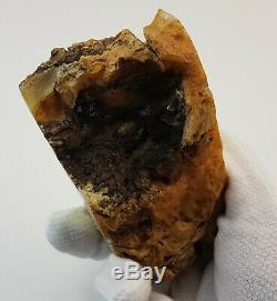 Stone Raw Natural Amber Baltic 290,1g Special Rare Sea Vintage Old White Stone