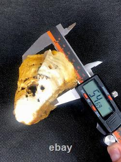 Super Rare Natural TIGER Raw Baltic Amber Stone 211gr Rock kahrab
